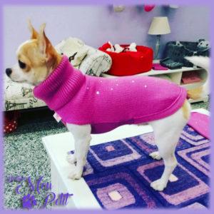 Outfit: Il maglioncino a collo alto di My Dog lo trovi da Mon Petit Boutique