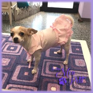Outfit: Beaucoup d'Amour Mon Petit Boutique