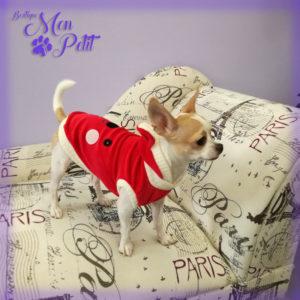 Mon Petit Boutique - Abbigliamento e accessori per cani aperto anche di domenica