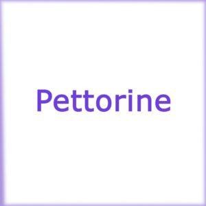 Pettorine