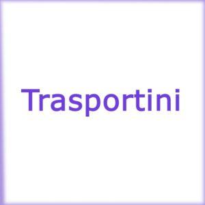 Trasportini
